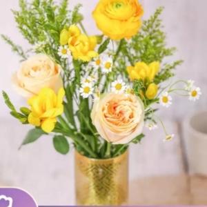 PLUS会员:花点时间 鲜花速递 等春来 升级款
