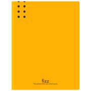 fizz 飞兹 A2387 加厚A4长押夹文件夹板 橙色 *3件