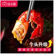 RedChef 红小厨 麻辣小龙虾尾 252g *6件99.6元包邮(多重优惠)
