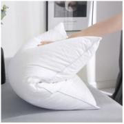苏娜国际 枕芯 400g 40*60cm