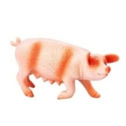 Wenno 仿真动物 玩具模型