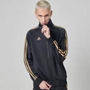 adidas 阿迪达斯 TR30J1 男款经典运动夹克