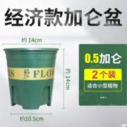 经济耐用!花举人 加仑花盆 2个装 0.5加仑 2.9元包邮(需用券)¥2.90 2.1折