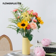 FlowerPlus 花加 沐春风主题花 不含花瓶