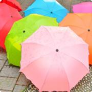 亲海 晴雨两用雨伞 遇水开花 1把