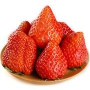 PLUS会员:农大腕儿 丹东99草莓 净重2.7斤(约40颗)65元包邮(双重优惠)