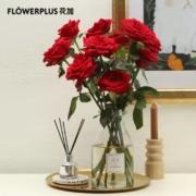 plus会员:Flower  Plus 花加  小玫瑰 10枝  颜色随机