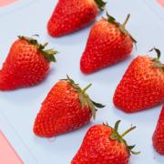 京东PLUS会员:牛小花 丹东99草莓 大果3斤装(净重2.8斤)69元包邮(双重优惠)