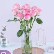 plus会员:REFLOWER 花点时间 雪山玫瑰10枝 颜色随机