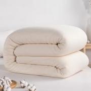 pierre cardin 皮尔·卡丹 100%新疆纯棉花棉被 120*150cm 1斤24元