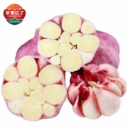 PLUS会员: 苹果红了 新鲜紫皮大蒜 500g *5件9.9元(折合1.98元/件)