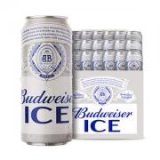百威啤酒 冰啤 500ml*18听79元包邮