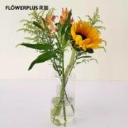 plus会员:FlowerPlus 花加  向日葵1枝+黄莺2枝+香槟色六出1枝9.9元包邮(需用券)