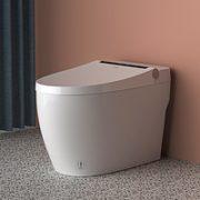 10日0点!OPPLE 欧普照明 全自动一体式智能马桶 基础款¥949.50 2.5折