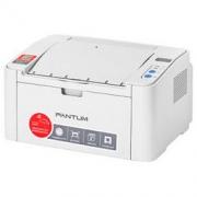 PANTUM 奔图 P2206NW 黑白激光打印机489.1元(包邮,双重优惠)