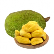 PLUS会员:梅珍 海南黄肉菠萝蜜 30-35斤64.8元包邮(双重优惠)