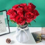 linkinjoy 玫瑰鲜花水养 红玫瑰20枝¥19.90