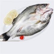 PLUS会员:鲜博汇 国产新鲜三去开背白蕉海鲈鱼 400-450g*3件44元包邮(多重优惠,合14.67元/件)