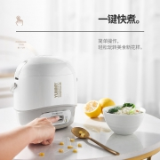 CHANGHONG 长虹 FB12-T35 电饭煲 1.2L57.81元+209淘金币