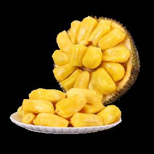 PLUS会员:寻味君 海南黄肉菠萝蜜 20-25斤
