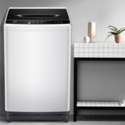 TCL XQB100-36SP 波轮洗衣机