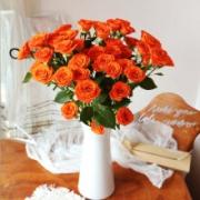 PLUS会员:linkinjoy 多头玫瑰 单色随机 5枝