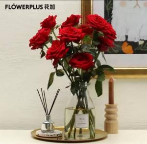 plus会员:Flower  Plus 花加  优选玫瑰 10枝  颜色随机