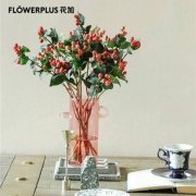 PLUS会员:FlowerPlus  花加  优选红豆  12枝