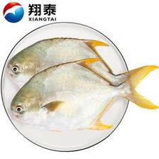 XIANGTAI 翔泰 国产海南金鲳鱼 500g*10件