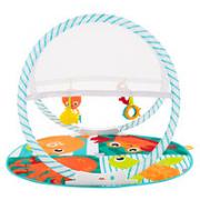 Fisher-Price 费雪 FXC15 婴儿健身架玩具(内含4个玩具)¥34.05 3.8折 比上一次爆料降低 ¥0.95