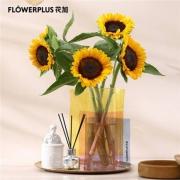 PLUS会员:FlowerPlus 花加  优选向日葵 5枝9.9元包邮