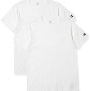 M码!Champion CM1-T701 男士T恤 2件装   含税包邮到手73.65元