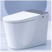 diiib 大白 DXD01004-1031 即热式智能马桶 305mm2599元包邮(满减)