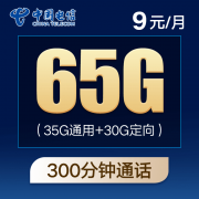 CHINA TELECOM 中国电信 紫星卡 9元月租(35G通用流量+30G定向流量+300分钟国内通话)4.9元包邮