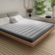 Sleemon 喜临门 Z6 天然椰棕硬垫护脊儿童床垫 150*190*6cm