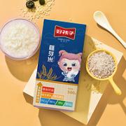 gb 好孩子 营养胚芽米粥  500g