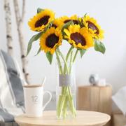 PLUS会员:FlowerPlus 花加 向日葵鲜花 5枝