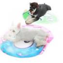 Touchdog 它它 宠物地垫 70cm¥16.90 2.5折 比上一次爆料降低 ¥3