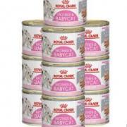 ROYAL CANIN 皇家 1-4个月猫咪主食罐头 195g*10185元包邮