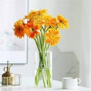 PLUS会员:FlowerPlus 花加 非洲菊 10枝9.9元包邮(需用劵)